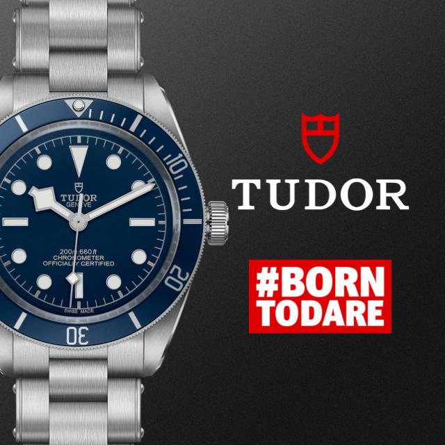 Tudor banner op 3